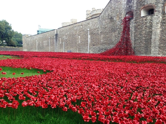 Red and always remembered - Poppies to those who fell in the service of their country. The wonderful floral tribute to our Service men and women at the Tower of London.